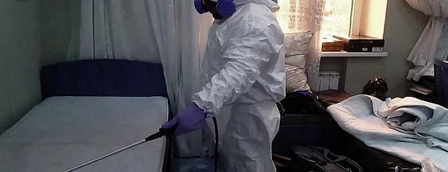 Уничтожение блох в помещениях
